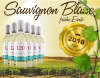 Frischer Sauvignon Blanc aus dem Jahrgang 2018