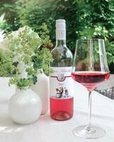 Die Leichtigkeit des Lebens im Glas - Sommerweine aus dem Weingut Franz Schindler