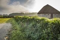 Schafmuseum Texel: Insel setzt wolligen Bewohnern ein Denkmal