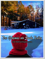 """Die Entscheidung über das endgültige Buch Cover  von """"Das Geheimnis von Swake Valley-Eine Weihnachtsgeschichte"""" ist gefallen !"""