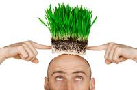 showimage Besser mit Glatze