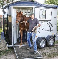 Mit-Pferden-reisen informiert: Mit Balanced Horse Training und Frontausstieg-Pferdeanhänger erfolgreich Pferde verladen