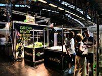 Pflanzenlampen von excite helfen Urban Farmers und Indoor Pflanzenzüchtern die Produktionsproduktivität, den Ertrag und die Qualität zu steigern