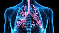 Therapie-Optionen bei COPD
