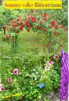 Sommer-Blütenträume - Im Siegerland und anderswo