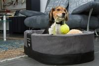 Exklusive Hundekörbchen, jetzt auch für kleine Hunde