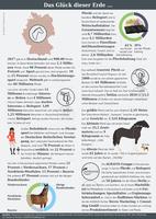 Infografik der AGRAVIS Raiffeisen AG zum Thema Pferde