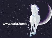 Buchtipp: NALA - Der magische Steinkreis Eine Pferdegeschichte