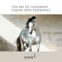"""showimage Training mit Pferden auf der """"Zukunft Personal"""": Vom Know-how zum Do-how"""