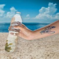 World Ocean Clean-Up-Challenge: SodaStream belohnt Umweltengagement mit Schildkröten-Tattoo