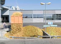 Keltereien produzieren Apfelsaft auf Hochtouren - alles wird verarbeitet!