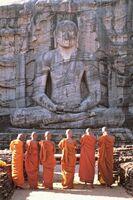 Sri Lanka: Entdecken Sie eine Welt mit endlosen Urlaubsmöglichkeiten