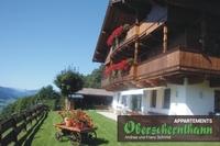 Brixental-Tirol, Urlaub auf der Alm, Ferienwohnung in Hopfgarten, Oberschernthann - Hohe Salve