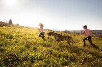 Hundeernährung - Die Natur als Vorbild.
