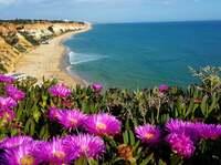 Wandern auf dem Fischerpfad an der Westküste Portugals