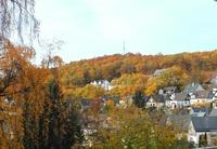 Im Siegerland: Vom Herbstbunt zu Vergänglichem