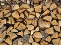 Damit die Kostenfalle nicht zuschnappt: Brennholz statt fossiler Energien