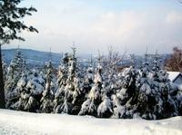 Wenn der Winter das Land verzaubert