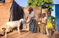 ?Deutsche finden Entwicklungshilfe wichtig, aber nur wenige wollen dafür spenden