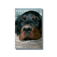 """""""Kleine Schritte, große Ziele - Ein empathisches Begleitbuch für festgefahrene, schmerzhafte oder sich auflösende Lebenssituationen"""""""