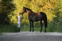Pferdeeinäscherung - neu bei ANUBIS-Tierbestattungen