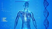 Was muss ein Operateur über den Knochenstoffwechsel wissen?