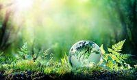 energieberatung rolf krause setzt sich für den Umweltschutz ein