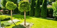 Gärtnerei in Stuttgart gibt Tipps für den Frühling