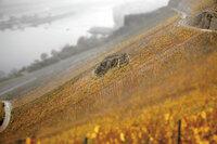 demeter-Weingut Martin Schömann füllt Unikat-Weine für Fachhändler