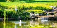 Innovativ und nachhaltig - Gartenbau in Stuttgart
