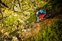 Abenteuer Mountainbike