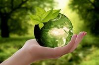 Deutsche mögen ethisch-ökologische Investments