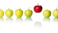 Betriebliche Bildung - Richtig Lernen statt Gießkanne