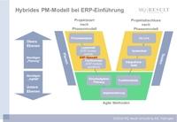 Management agiler Software-Einführungen