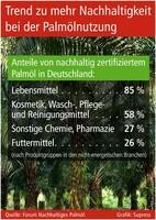 Trend zu mehr Nachhaltigkeit bei der Palmölnutzung