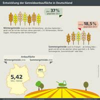 showimage Infografik der AGRAVIS Raiffeisen AG zum Getreideanbau