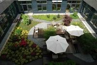 Pflanzenschutz auf Dachbegrünungen