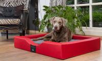 Exklusives Hundebett mit orthopädischer Liegefläche