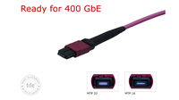 Ready for Highspeed: 16 and 32 fibre MPO applications by tde
