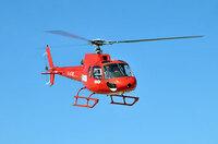 Wohin zu Ostern?  Berlin-Helicopter startet in die grüne Saison der Hauptstadt