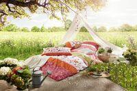Blumenwiese - sommerlicher Einrichtungstrend bei erwinmueller.de