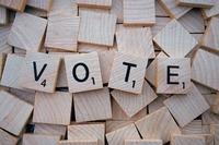 Vote-Domains sind die Domains erster Wahl, wenn es um Wahlen geht...