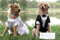 Was ändert sich, wenn Sie heiraten?