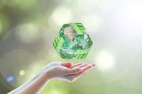 Bio Einwegverpackungen und umweltfreundliche Servicelösungen von Pack4Food24
