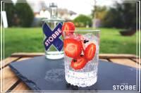 Jetzt Erdbeer - Gin & Tonic selber machen