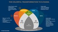 DATAVARD einer von vier strategischen Partnern für Migration nach SAP S/4HANA weltweit
