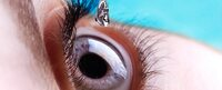 Augenarzt in Pirmasens: Katarakt OP nicht aufschieben