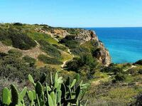 Anders reisen an der Algarve - Urlaub für Naturliebhaber