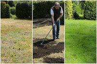 showimage Geheim-Tipp für den hitzegeschädigten Rasen