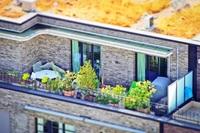 Marktforschungsstudie City Gardening  ein boomender Markt?